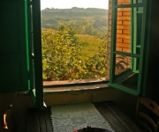 Vista dalla finestra
